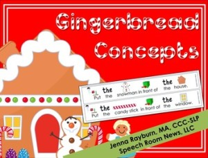 Gingerbread Concepts from SRN
